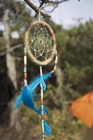 dromenvanger in de wilde natuur. foto
