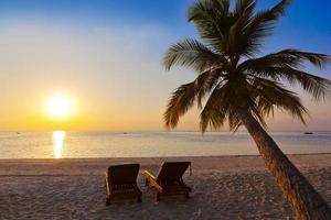 stoelen op het strand van de maldiven foto