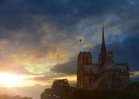 Notre Dame de Paris in de schemering, Frankrijk.