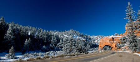 kronkelende weg op rode canyon foto