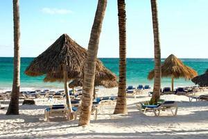 zand, oceaan en palmbomen foto