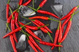 hete rode chili peper foto