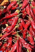 gedroogde rode chili peper foto