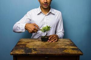 gelukkig man zijn bonsai boom snoeien foto