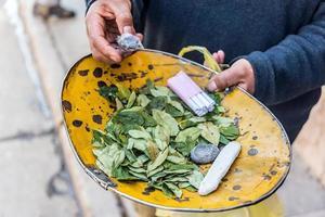 cocabladeren in potosi foto