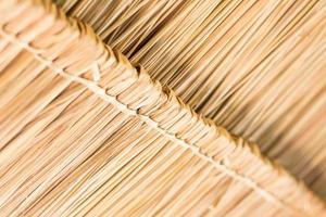 de textuur van een rieten dak bij de hut.