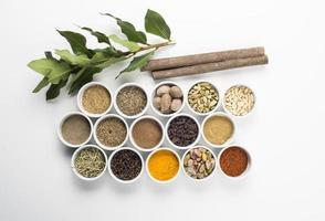 grote verzameling van verschillende specerijen en kruiden geïsoleerd foto