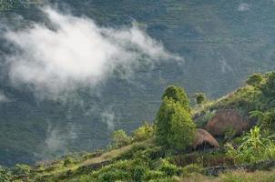 traditionele hutten in papua
