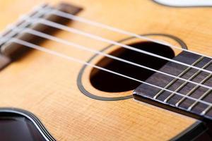 kleine Hawaiiaanse viersnarige ukelele gitaar