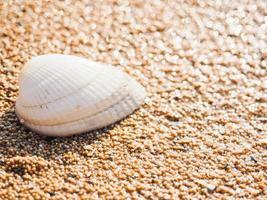 Sanur strand foto