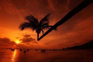 Ko Tao strand van Thailand foto
