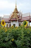 tempel en zonnebloem veld foto