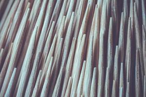 close-up tandenstoker macro achtergrond foto