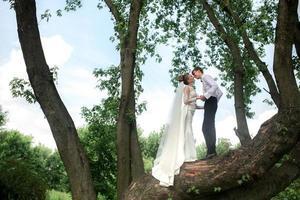 bruid en bruidegom op de boom foto