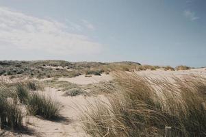strand zandduinen in Portugal foto