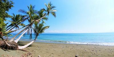 kosten Ricaanse strand foto