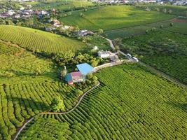 antenne van boerderij en huizen