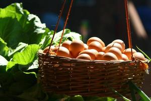 mand gevuld met eieren foto