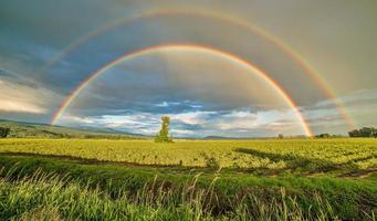 dubbele regenboog over veld foto