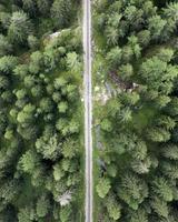 luchtfoto van spoorweg in bos