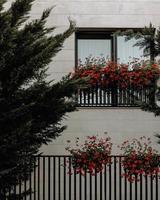rode bloemen op raamrails foto