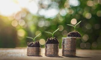 stapels munten met groeiende planten foto