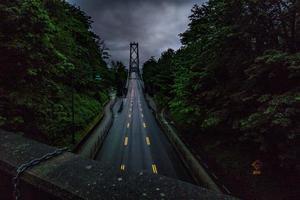 uitzicht op brug tussen bomen foto