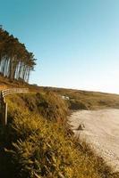 bomen, hekwerk en heuvels naast het strand