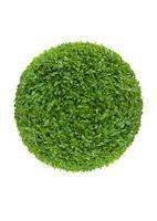 bal van groene bladeren foto