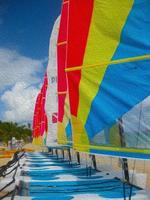 catamaran illustratie foto