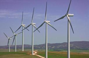 windturbines boerderij foto