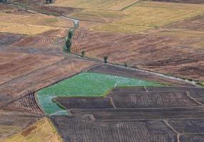 luchtfoto van rijstvelden in de mekongdelta foto