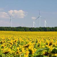 windturbines die elektriciteit opwekken foto