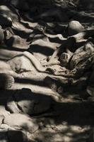 licht en schaduwen op rotsachtig pad foto