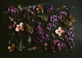 paarse en witte bloemen foto