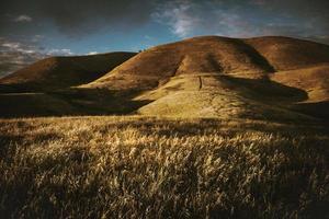 met gras begroeide heuvel bij zonsondergang foto