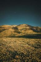 veld in de buurt van heuvels onder blauwe hemel foto