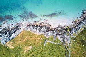 luchtfoto van groene bomen en watermassa foto