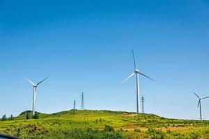 windmolens in de vallei foto