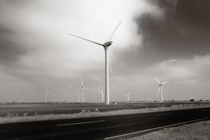 windmolenpark foto