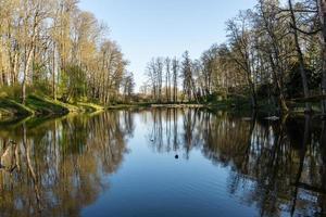schilderachtige reflecties van bomen en wolken in water