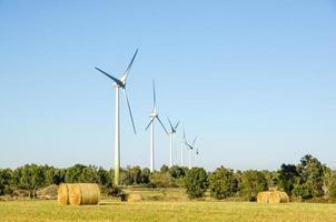 windmolens boerderij foto