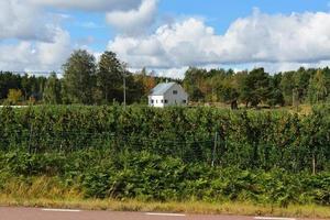 huis in appelboomgaard foto