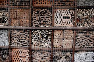 hotel voor insecten foto