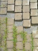 oppervlak van een gebroken cement bakstenen bestrating voor textuur achtergrond