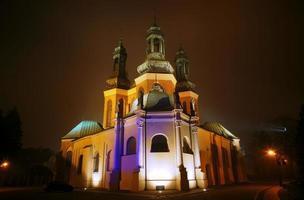 kathedraal kerk in mistige avond