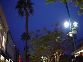 blauwe luchten en groene bomen foto