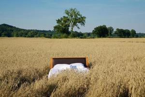 bed in een graanveld - concept van een goede nachtrust foto