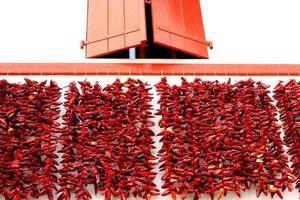 espelette pepers die aan de gevel hangen foto