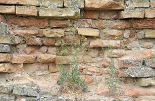 oude bakstenen muur textuur achtergrond